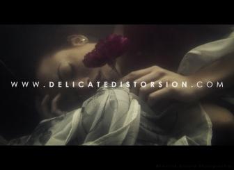 Promotion online 2015